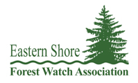Eastern Shore Forest Watch Logo